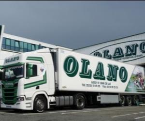 OLANO SERVICES