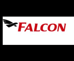 Falcon Airfreight Speditionsgesellschaft M.b.H.
